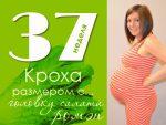 37 неделя беременности видео что происходит с малышом и мамой – что происходит с малышом и мамой на 36-37 акушерской неделе, сколько это месяцев, понос и боль в пояснице, простуда и секс